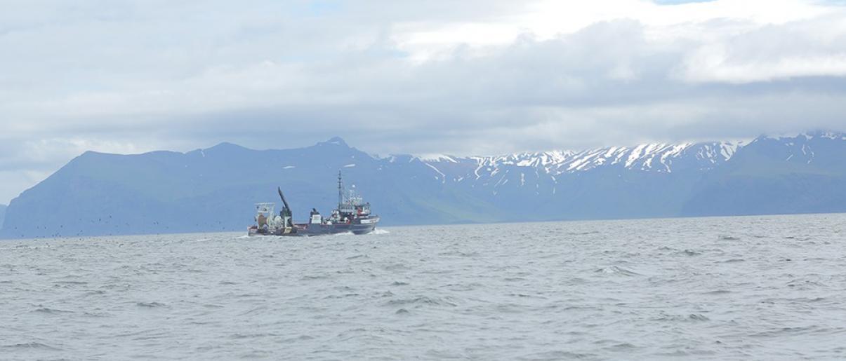 pêche responsable 2011 40 ans manger mieux fleury michon