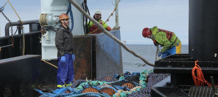 pêche responsable rejet surimi question faq fleury michon
