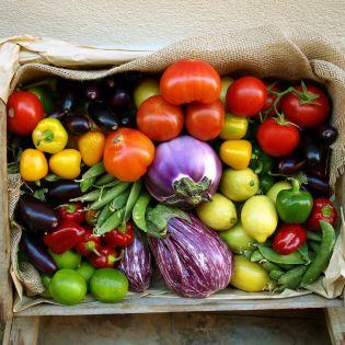 faire manger légumes enfants conseils nutrition manger mieux fleury michon