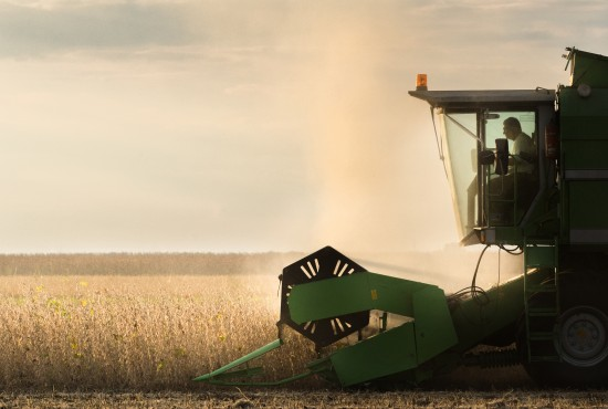 Une exploitation agricole