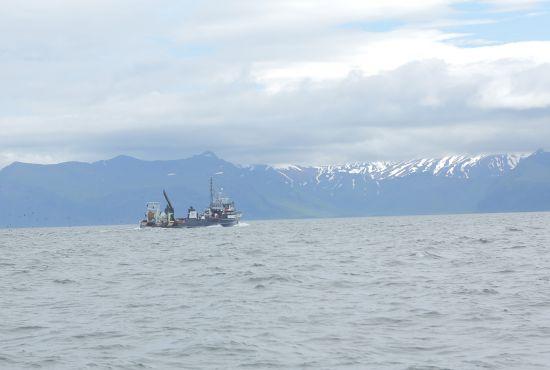 pêche alaska faq question fleury michon