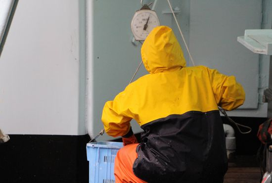 poisson fabrication surimi question faq fleury michon