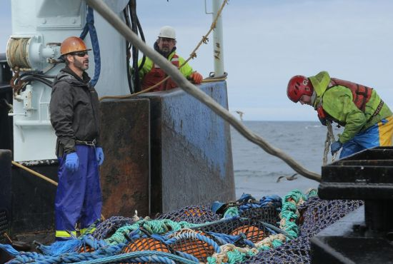 pêche responsable alaska surimi faq question fleury michon