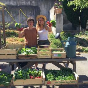 Agriculture urbaine Marseille Ulule Fleury Michon