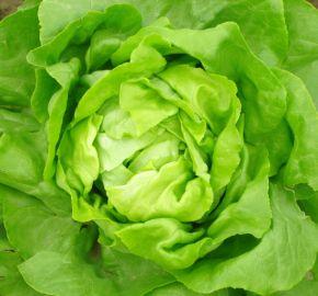 préparation salade tour de main joël robuchon manger mieux fleury michon
